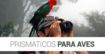 Prismáticos para Aves