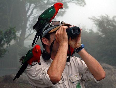 prismaticos para aves